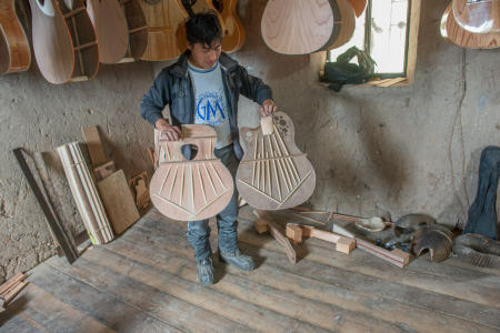 Guitar and string instruments craftsman
