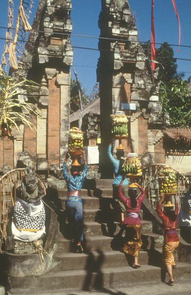 Bali. morning offerings