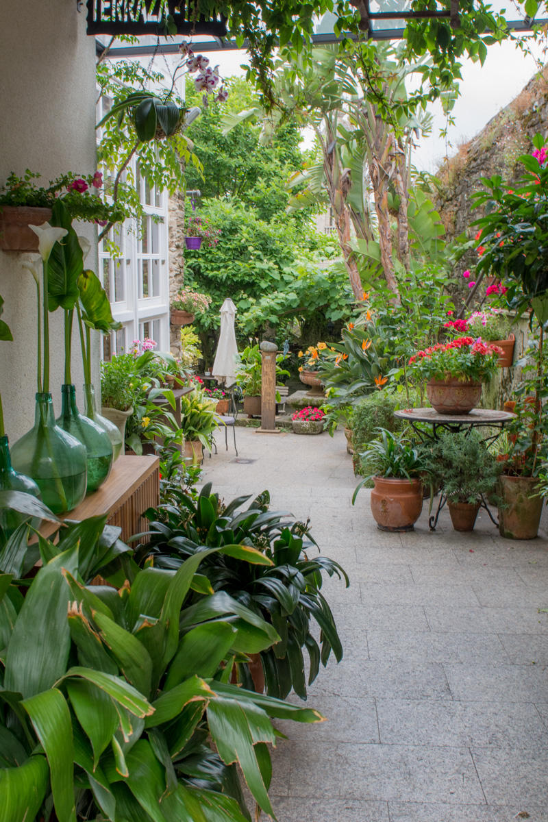 Garden in Hotel Costa Vella