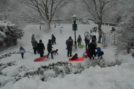 Sleding In Ft. Tryon Park, New York City