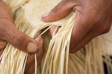 Weaving straw for Panama Hats, Ecuador