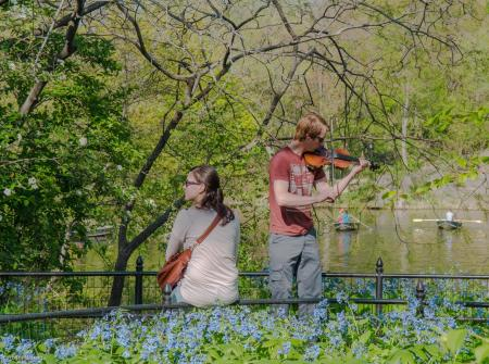 Central Park, musician
